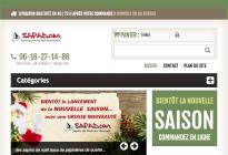 sapadom.com